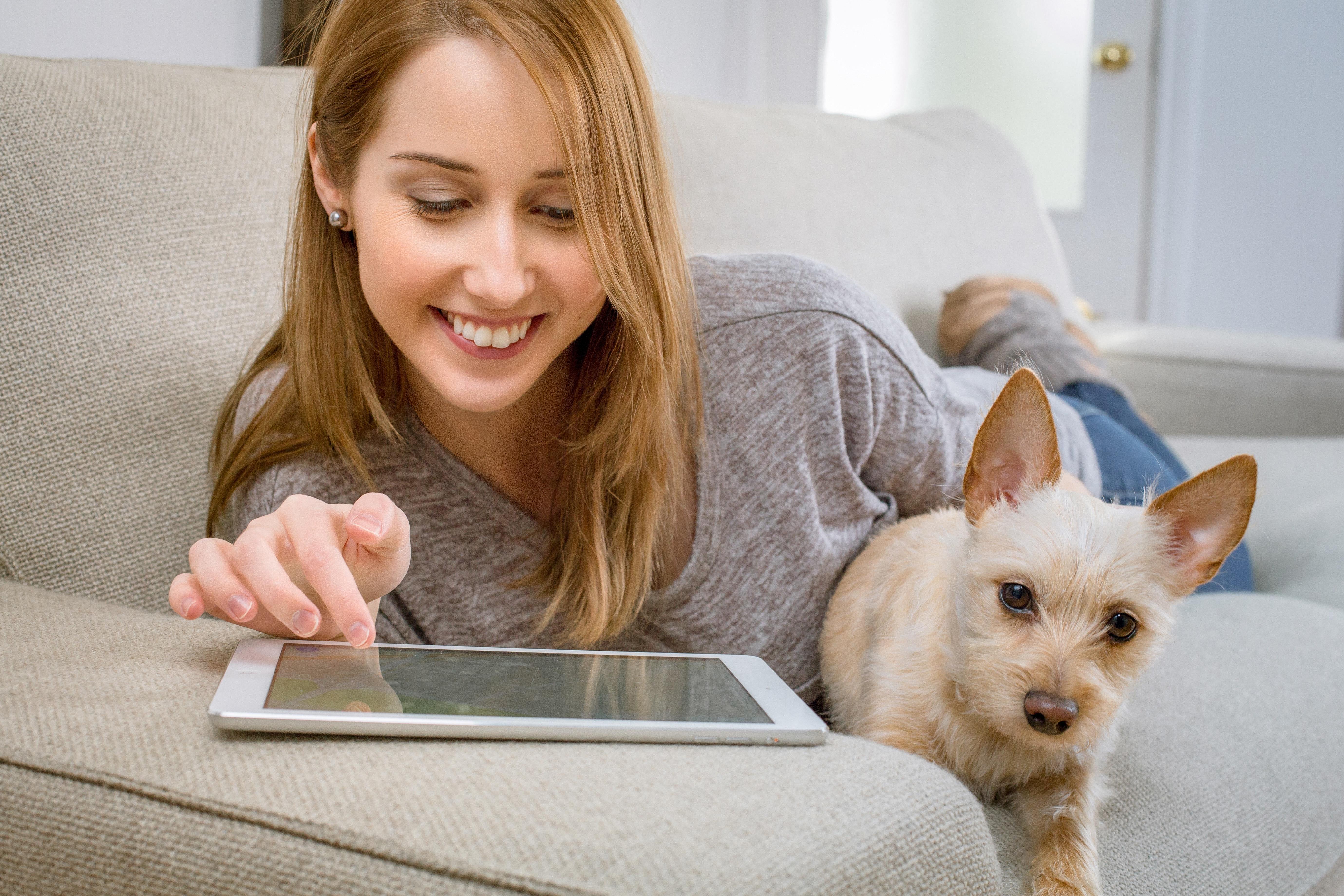assistir novela online